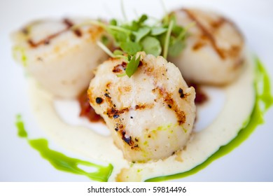 Grilled scallops on a white plate with garnish and sauces. Short depth of field.