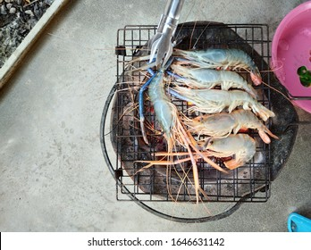 Grilled Shrimps on Charcoal Grill.