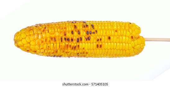 Grilled sweet corn cob isolated on white