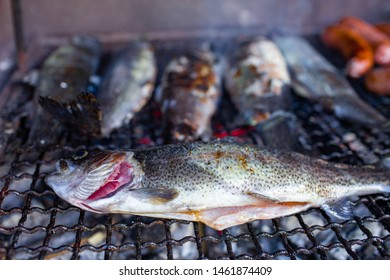 grilled trout freshwater fish European rivers