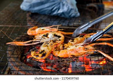 Grilling Giant River Prawn on charcoal stove.