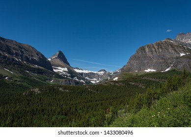 Grinnell Glacier Behind Green Forest in Montana wilderness