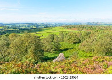 Gritstone rocks, ferns and heather cling to the steep slopes of Birchen Edge. Below the Derbyshire countryside sits under a blue sky