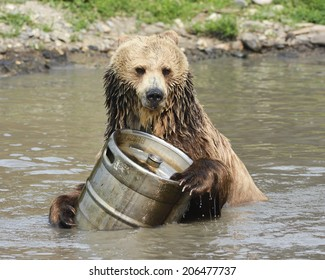 Grizzly Plays with Keg in Water