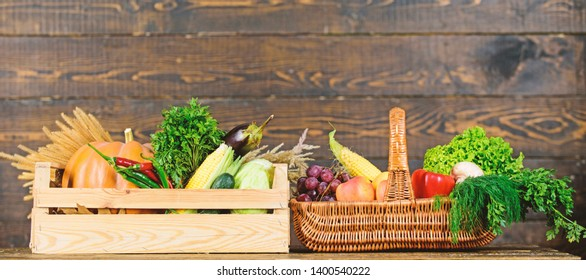 Grocery shop concept. Delivery service fresh vegetables from farm. Buy fresh homegrown vegetables. Just from garden. Box or basket harvest vegetables wooden background. Excellent quality vegetables.