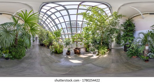 GRODNO, BELARUS -  JULY 2020: full seamless spherical hdri panorama 360 degrees angle view in greenhouse with a lot of plants  in equirectangular projection. VR  AR content