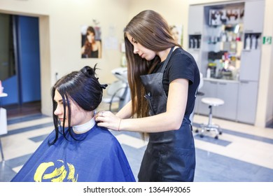 GRODNO, BELARUS -  MAY 2016: master hairdresser coiffeur doing a hairstyle in barber salon for young woman