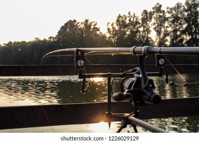 Groningen, The Netherlands - 24-8-2018 : waiting for the fish at the Hoornse Plas in Groningen