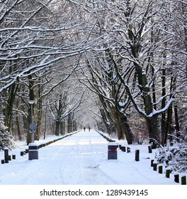 Groningen.January-03-2010. Snow in the city park of Groningen. The Netherlands