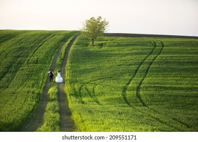 groom and bride on a green field