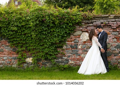 groom and bride posing in front ol old brick wall with ivy