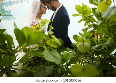 groom and bride posing through the leafs