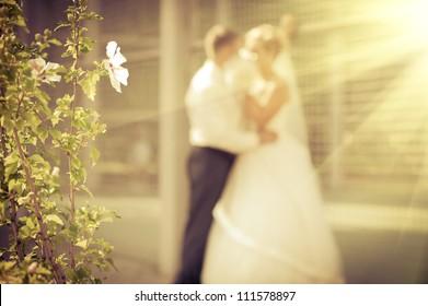 Groom and Bride in wedding. bouquet of flowers