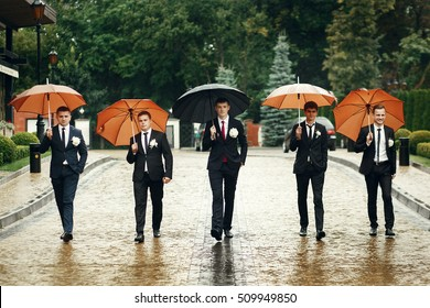 Groom and groomsmen walk under umbrellas along the path