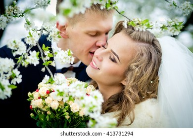 The groom is kissing the gentle bride in branches of the blossoming cherry tree. Newlyweds in the wedding day.