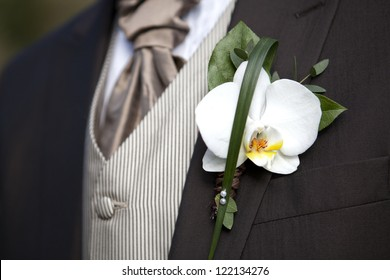 Groom with orchid boutonniere