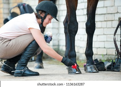Groomer horsewoman taking care of chestnut horse hoof. Outdoors multicolored horizontal image.