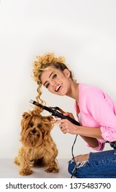 Grooming. Salon for dogs. Petshop. Dog salon. Beauty salon for animals. Grooming master making dog hairstyle. Pet grooming. Animal clinic. Vet.