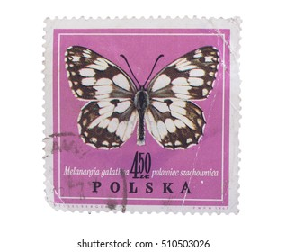 GROOTEBROEK ,THE NETHERLANDS - MARCH 8,2016 : A stamp printed in Poland shows butterfly in ,circa 1967