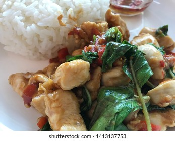 Ground chicken with holy basil and rice menu