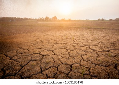 The ground is cracked. The area is dry. Condor has sunshine. Global warming.