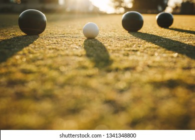 Ground level shot of boules lying near a jack. Three boules and a jack lying on ground with sun in the background.