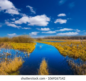 ground road among a prairies in a water