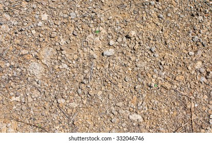 Ground texture with small stones and branches.