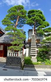 Grounds of Zenkoji Temple, Nagano Japan