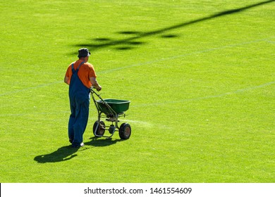 Groundsman spreads fertilizer for grass on a football pitch