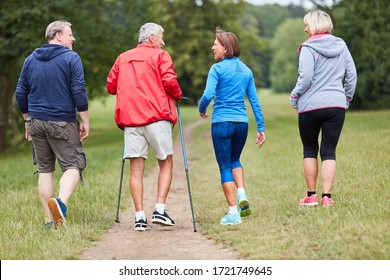 Group of active seniors as friends do nordic walking in nature