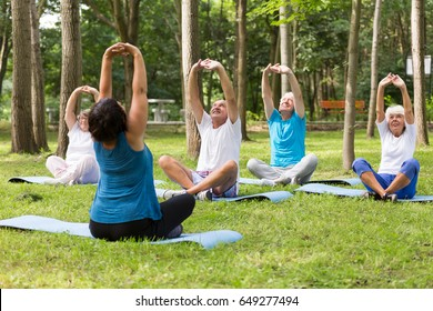 Group of active seniors working out in a park next to retirement home