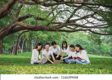 Group of Asian teen working and studying at park for education concept