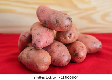 Group of asterix potatoes on a red fabric on a wooden background.