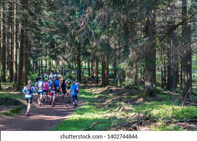 Group of athletes running through a forest