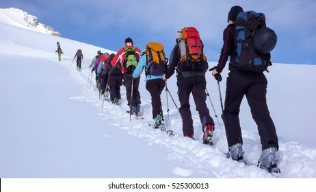 a group of backcountry skiers climbing a mountain in the Swiss Alps