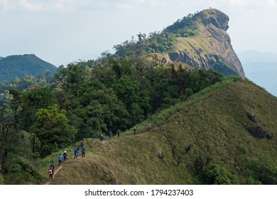 Group of backpackers spending their leisure activity hiking on the mountain ridge