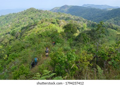 Group of backpackers spending their leisure activity hiking in the mountain