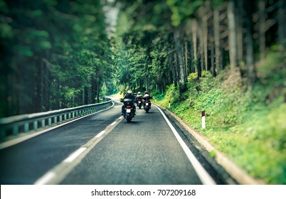 Group of a bikers on the highway between beautiful green pine tree forest, motorcyclists traveling along mountains road, freedom and active lifestyle concept