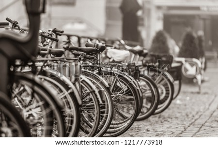 Group of bikes in