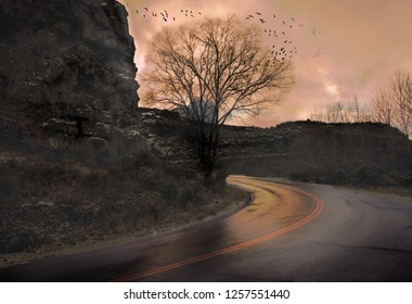 A group of birds scatters from a tree next to the sunlit road in a rocky canyon.