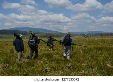 Group of birdwatchers leaving a sedge floodplain in south Poland. They are carrying scopes on tripods, binoculars and cameras.