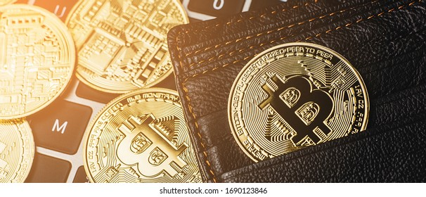 Group of bitcoin place on wallet. Online payment technology, digital wallet, computer financial,digital blockchain,  bitcoint stock, cryptocurrency trading and mining investment concept.
