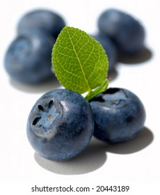 Group of blueberries isolated on white