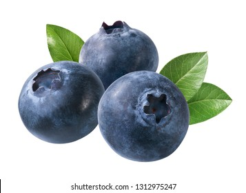 group of blueberries with leaves