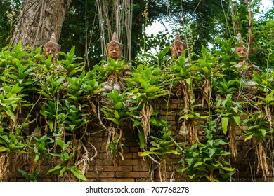 A group of Buddha statues sit atop a wall at the jungle temple Wat Pha Lat in Chiang Mai, Thailand.
