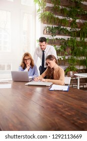 Group of business people working together. Young sales businesswoman and executive mature professional woman sitting in front of laptop while financial advisor businessman standing behind them.