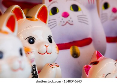 A group of ceramic Japanese lucky cats in the display cabinet (Japanese: Lucky Cat Chinese: Peace, lucky blessing, good luck, good fortune, ten thousand