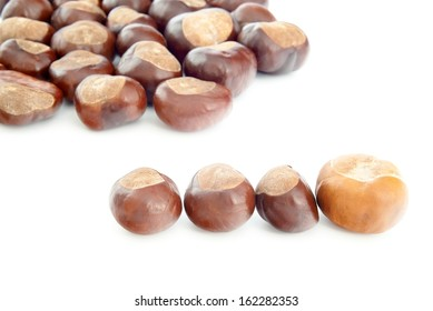Group of chestnuts on a white background