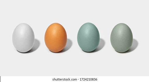 Group of Chicken eggs isolated on white background. White, brown, green and blue egg